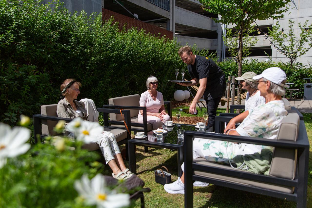 Outdoor furniture, Plant, Flower, Hat, Grass, Shorts, Leisure