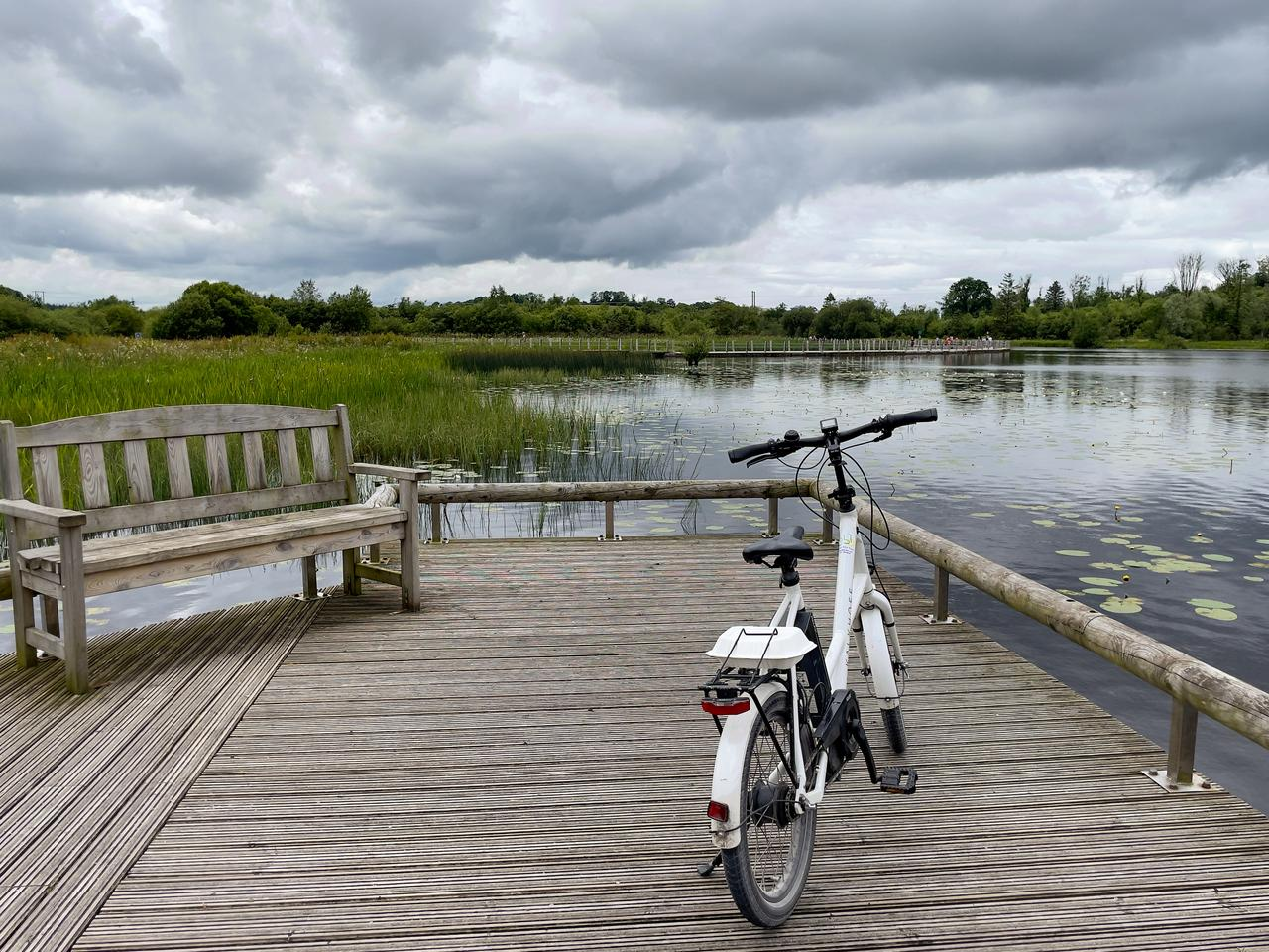 Bicycles--Equipment and supplies, Bicycle tire, Water, Cloud, Wheel, Sky, Crankset