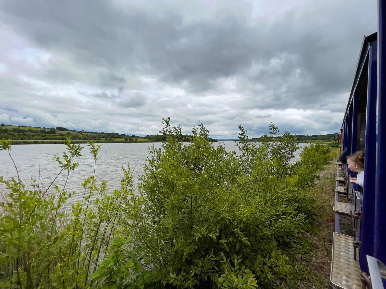 Cloud, Water, Sky, Plant, Ecoregion, Lake, Wood, Grass