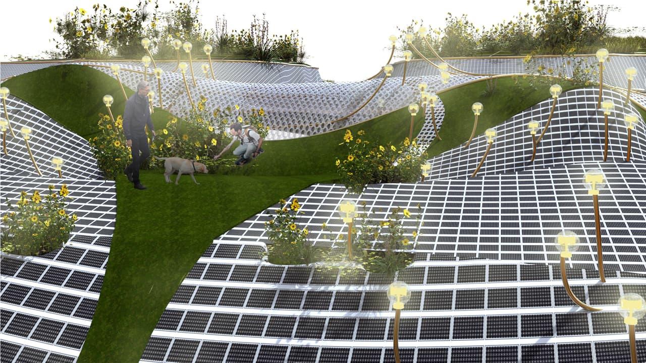 Urban design, World, Botany, Yellow, Vegetation, Grass, Slope, Biome, Mesh, Leisure