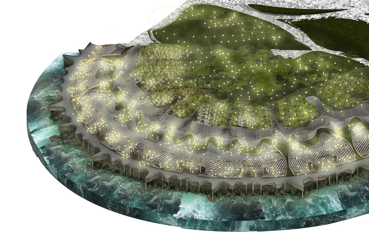 Marine invertebrates, Terrestrial plant