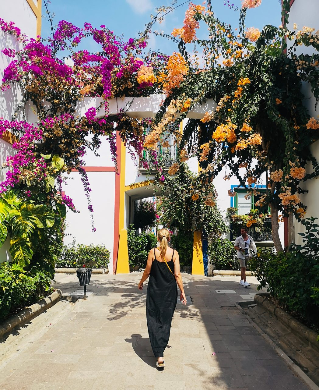 Road surface, Flower, Sky, Plant, Building, Leaf, Branch, Botany, Temple, Travel