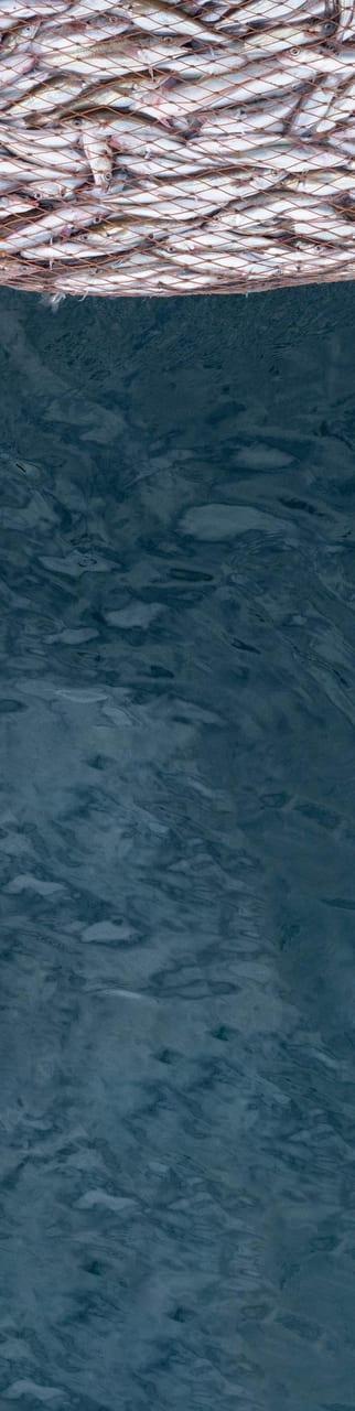 Water, Liquid, Fluid