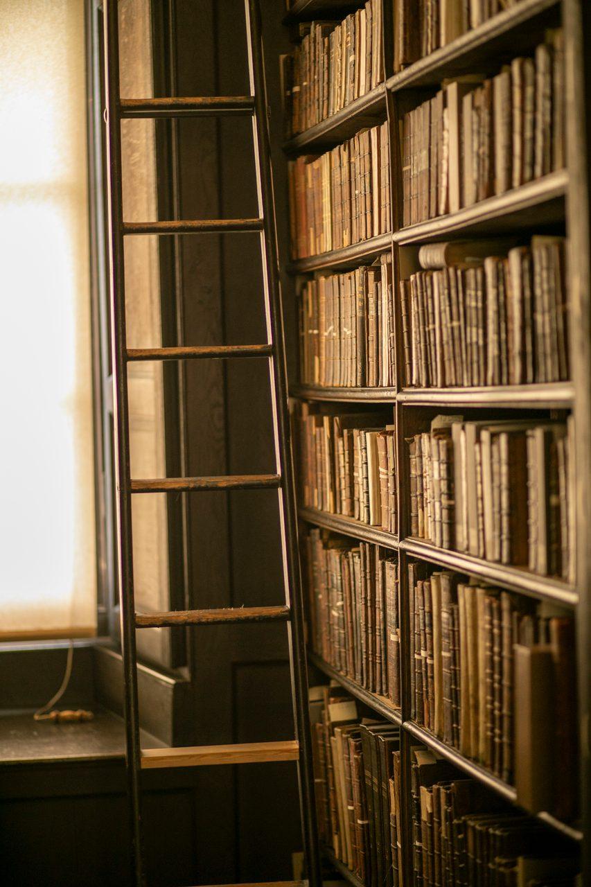 Bookcase, Shelf, Furniture, Shelving, Publication, Book, Wood