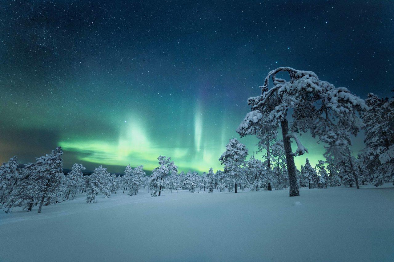 Natural landscape, Sky, Atmosphere, Plant, Light, Nature, Aurora, Snow, World, Cloud