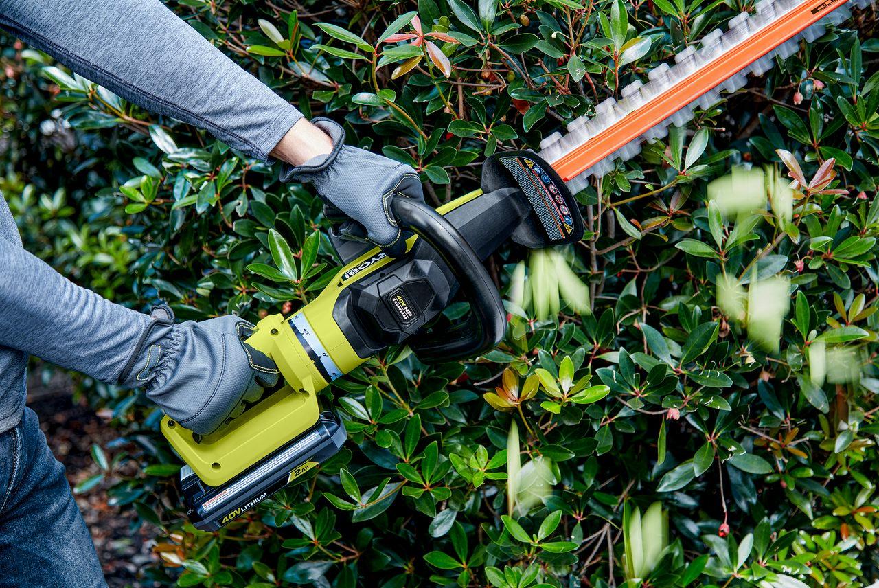 Plant, Glove, Tool, Branch, Chainsaw, Vegetation, Gesture, Grass, Biome