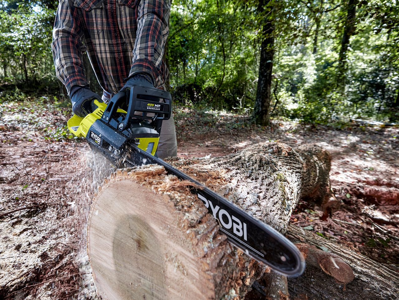 Automotive tire, Outdoor recreation, Plant, Saw, Tree, Wood, Wheel, Trunk, Grass