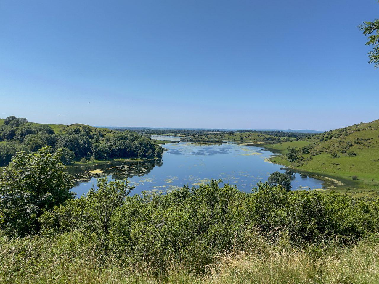 Fluvial landforms of streams, Plant community, Natural landscape, Lacustrine plain, Sky, Water, Tree, Watercourse, Lake