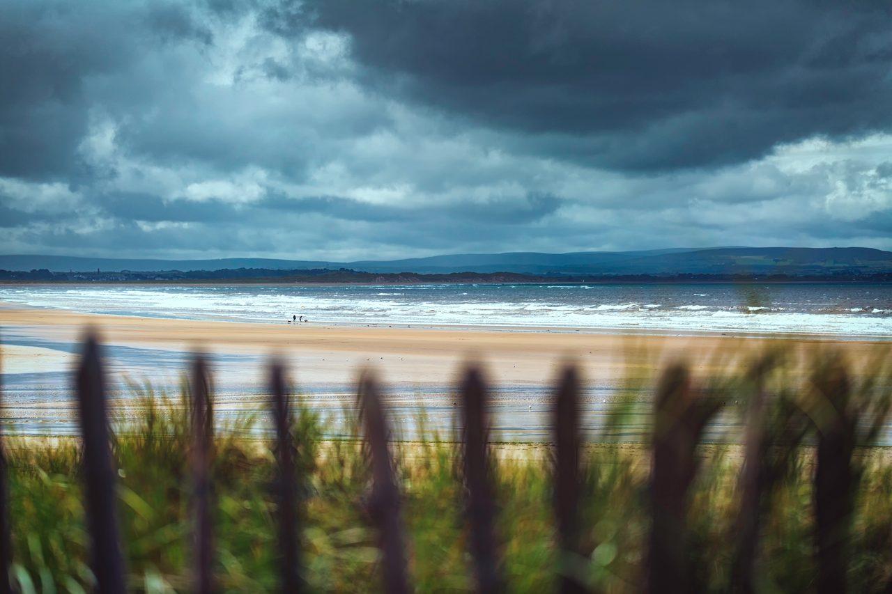 Natural landscape, Cloud, Water, Sky, Atmosphere, Plant, Azure, Wood, Beach, Lake