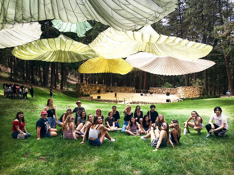 People in nature, Botany, Shade, Yellow, Umbrella, Leisure
