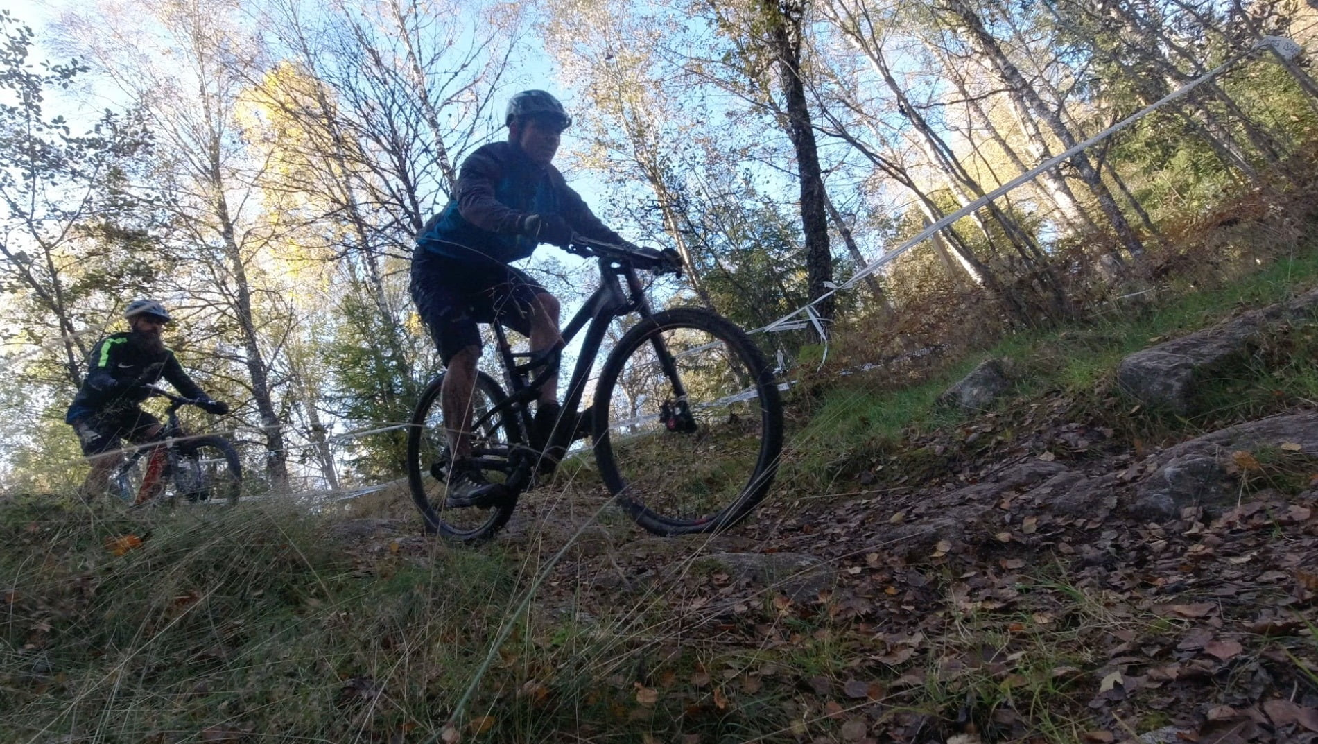 Bicycles--Equipment and supplies, Bicycle helmet, Wheel, Tire, Plant