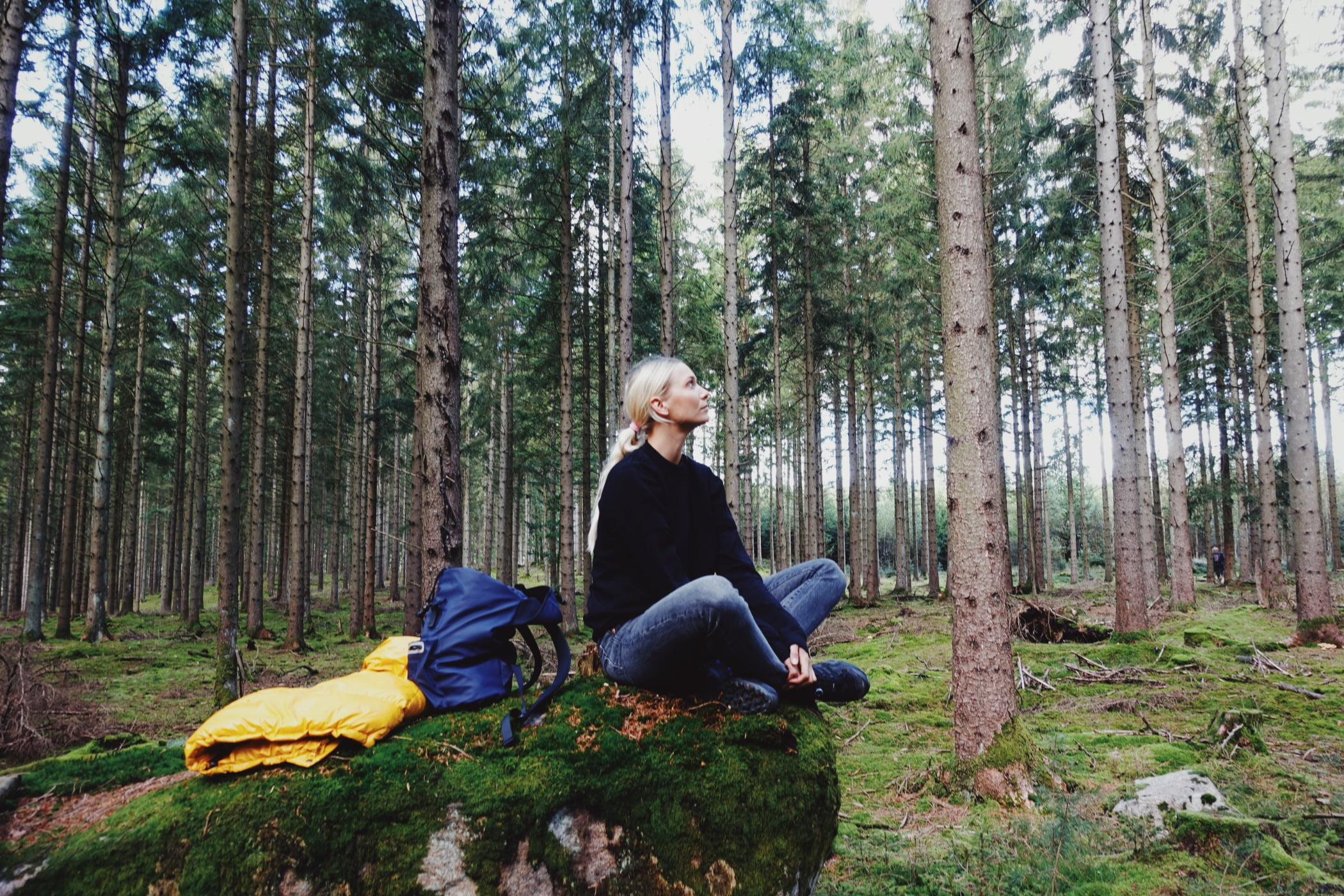 People in nature, Plant community, Natural landscape, Ecoregion, Wood, Branch, Tree, Trunk