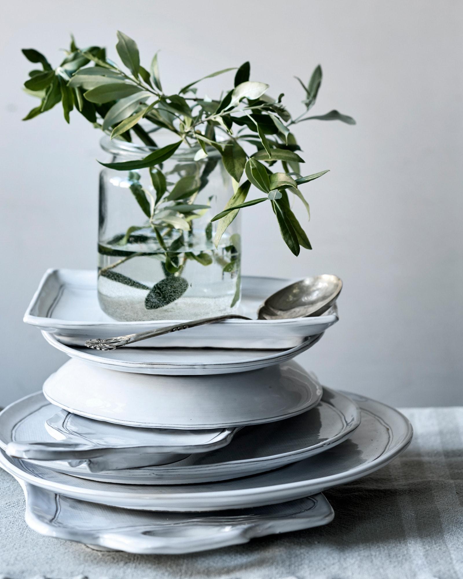 Plant, Dishware