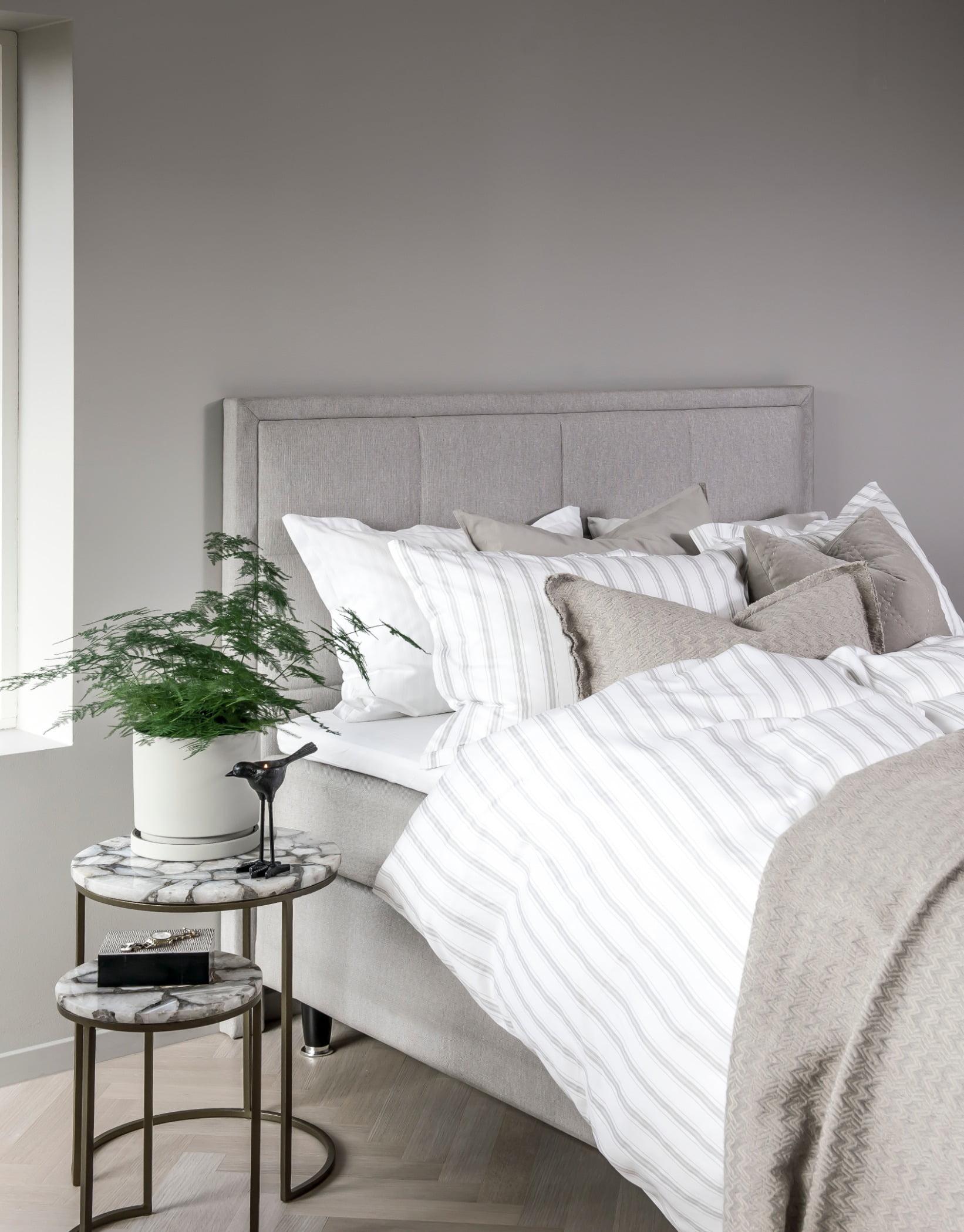 Bed frame, Interior design, Furniture, Plant, Comfort, Pillow, Shade, Lamp, Grey, Houseplant