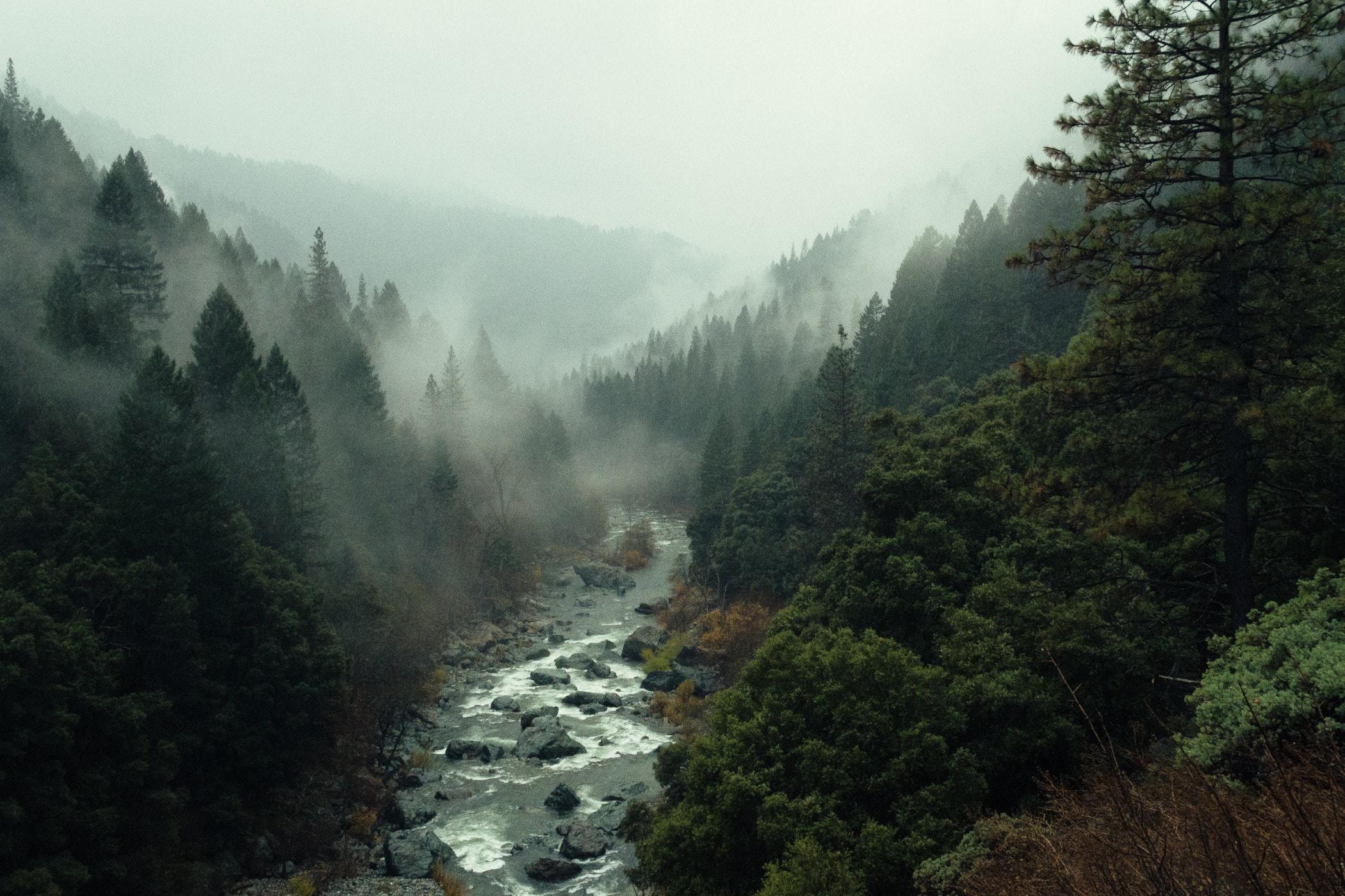 Nov in Sierra