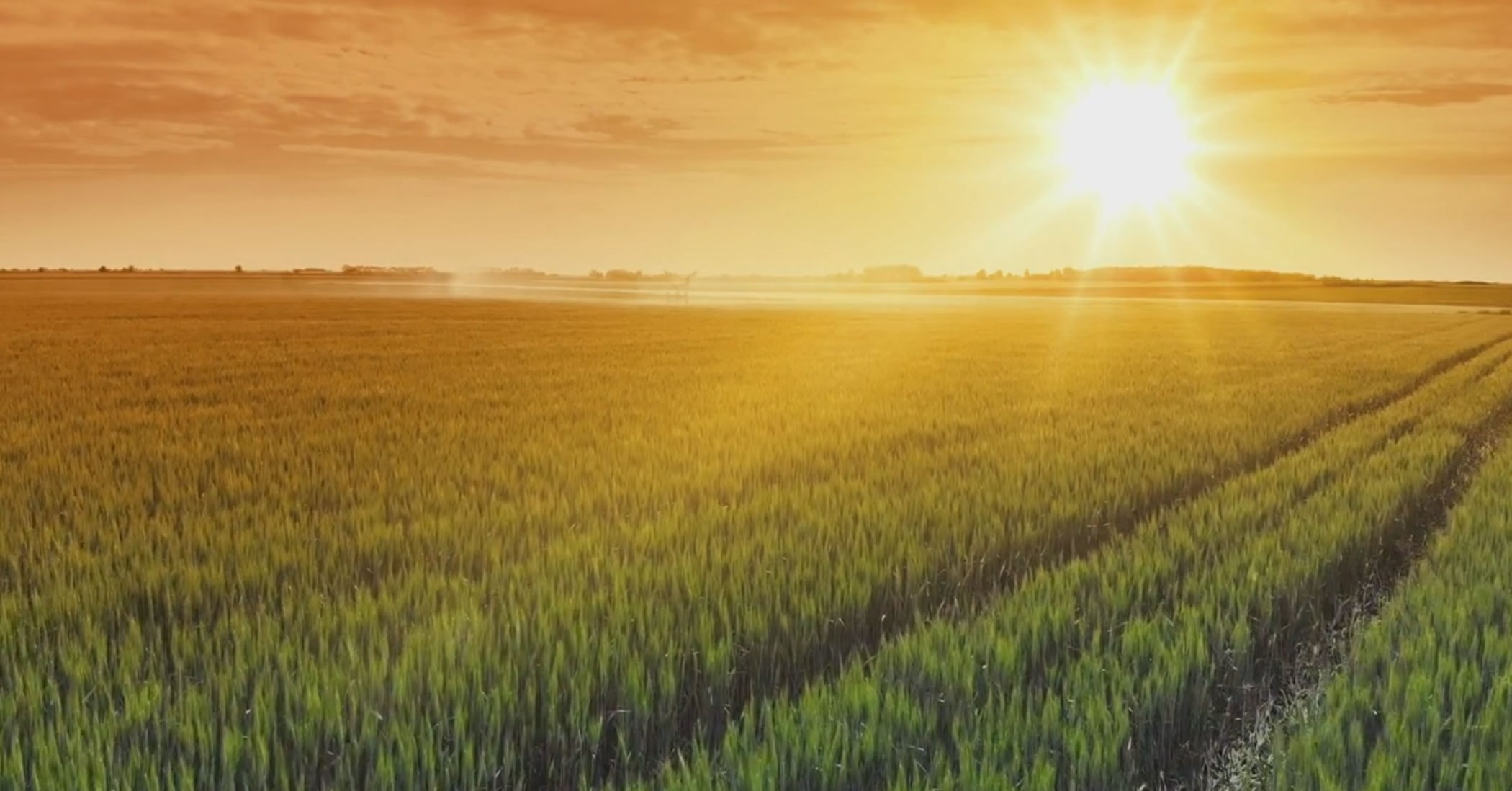 People in nature, Natural landscape, Atmospheric phenomenon, Cloud, Sky, Plant, Ecoregion, Afterglow, Sunlight, Agriculture