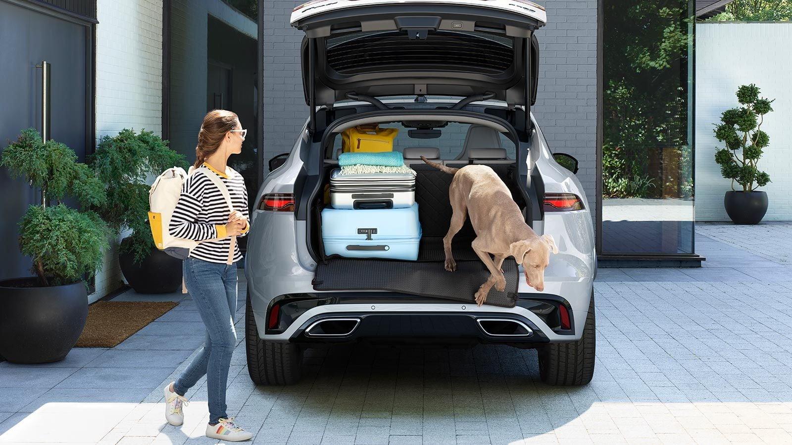 Luxury vehicle, Automotive design, Car