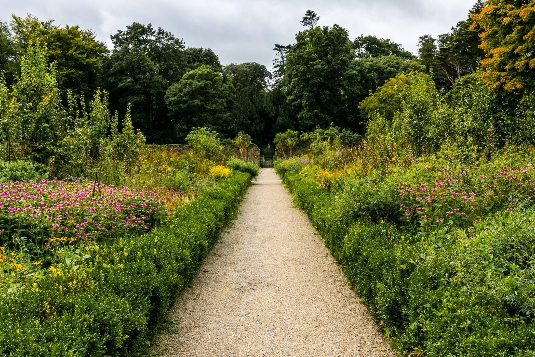 Nature reserve, Natural environment, Botanical garden, Grass, Green, Tree, Vegetation