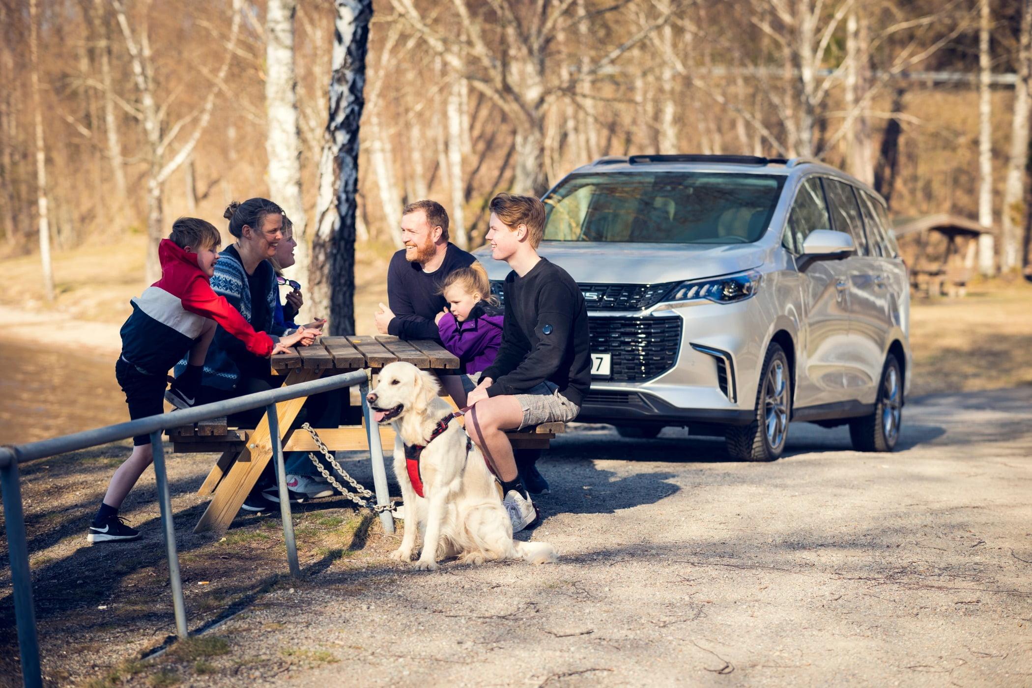 Land vehicle, Automotive design, Tire, Car, Dog, Wheel, Carnivore, Tree