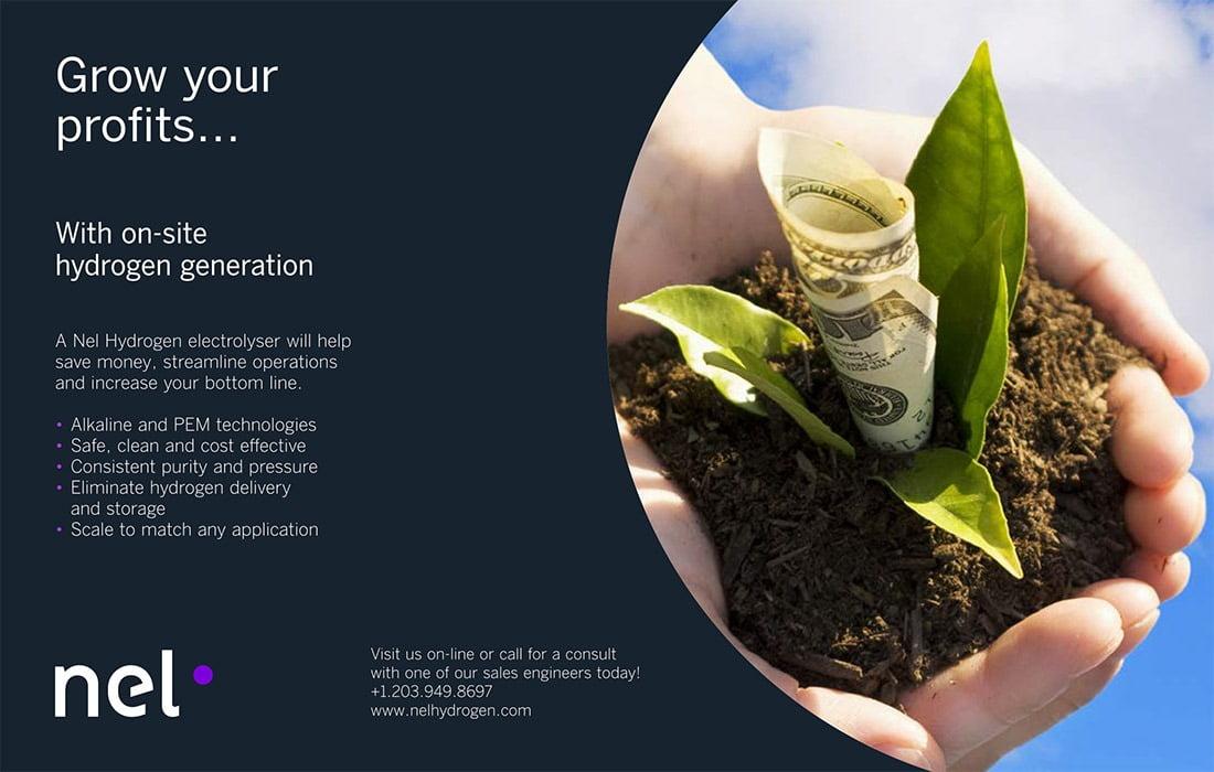 Terrestrial plant, Natural foods, Flowerpot, Product, Houseplant, Organism, Font, Ingredient