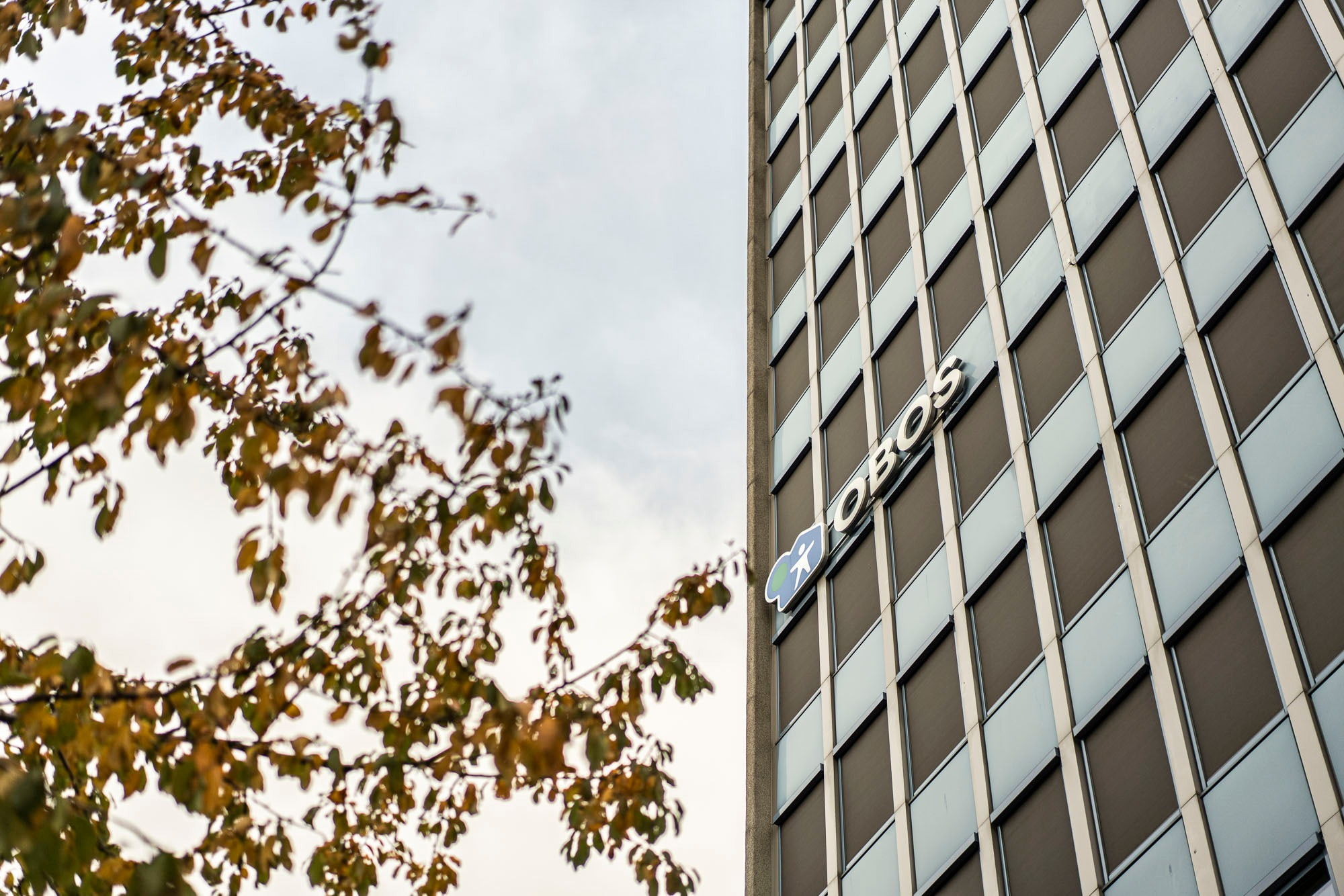 Tower block, Urban area, Building, Line, Facade, Leaf, Tree, Daytime, Sky, Architecture