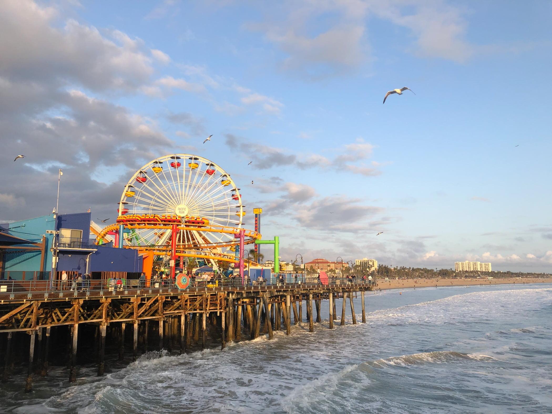 Ferris wheel, Water, Cloud, Sky, Bird, Dusk