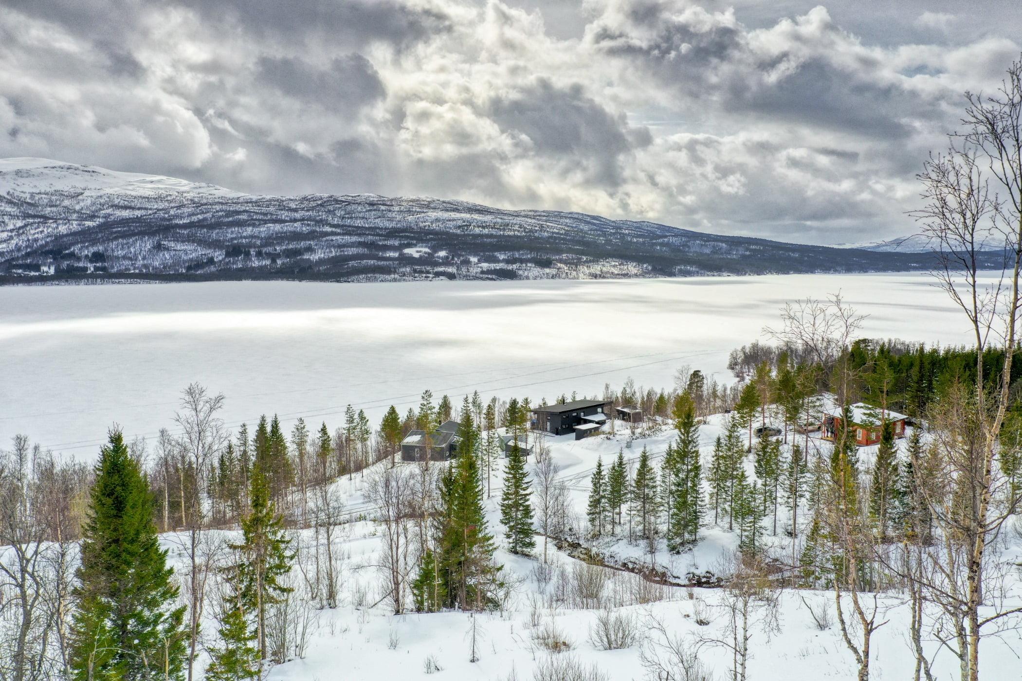 Natural environment, Cloud, Sky, Plant, Snow, Ecoregion, Branch, Larch, Tree