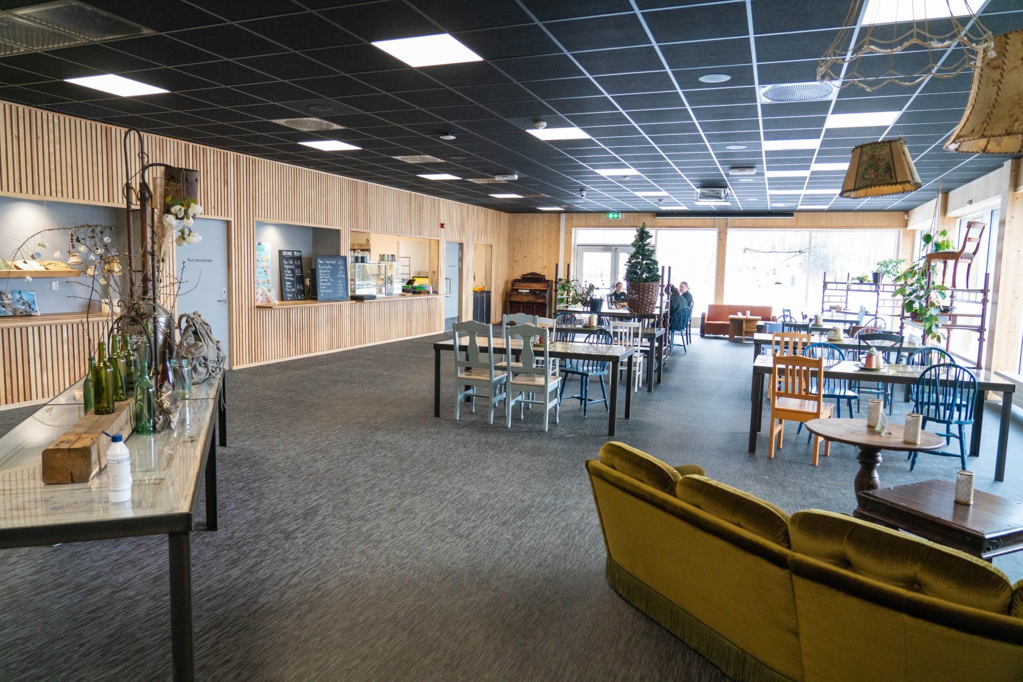 Interior design, Furniture, Table, Chair, Plant, Architecture, Flooring, Floor, Bookcase, Building