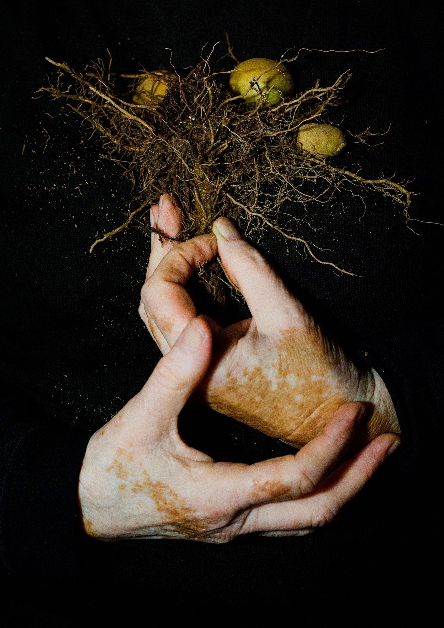 People in nature, Human body, Hair, Head, Chin, Arm, Eye, Leg, Plant, Beard