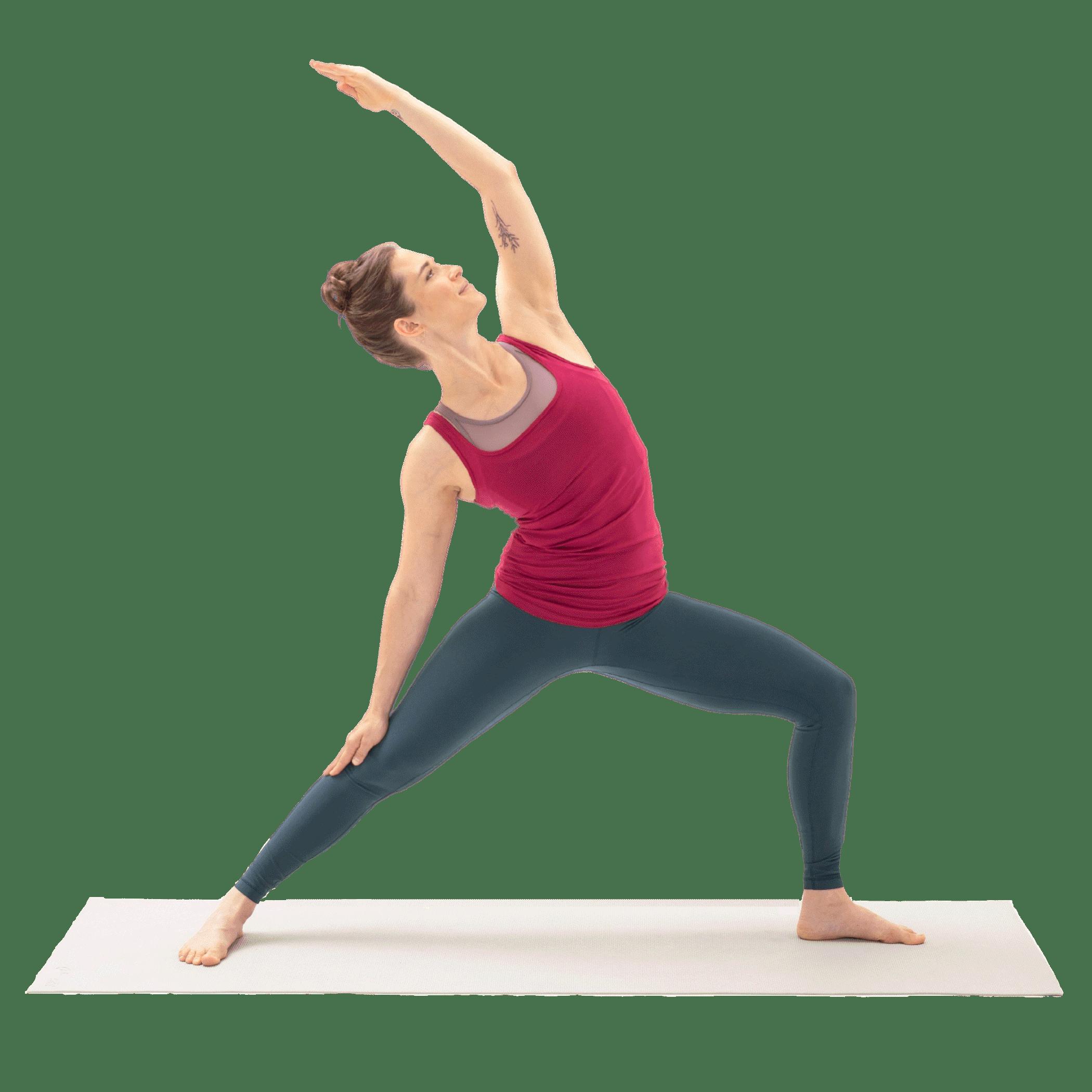 yoga pant, Active pants, Shoulder, camisoles, Leg, Undershirt, Neck, Sleeve, Knee, Waist