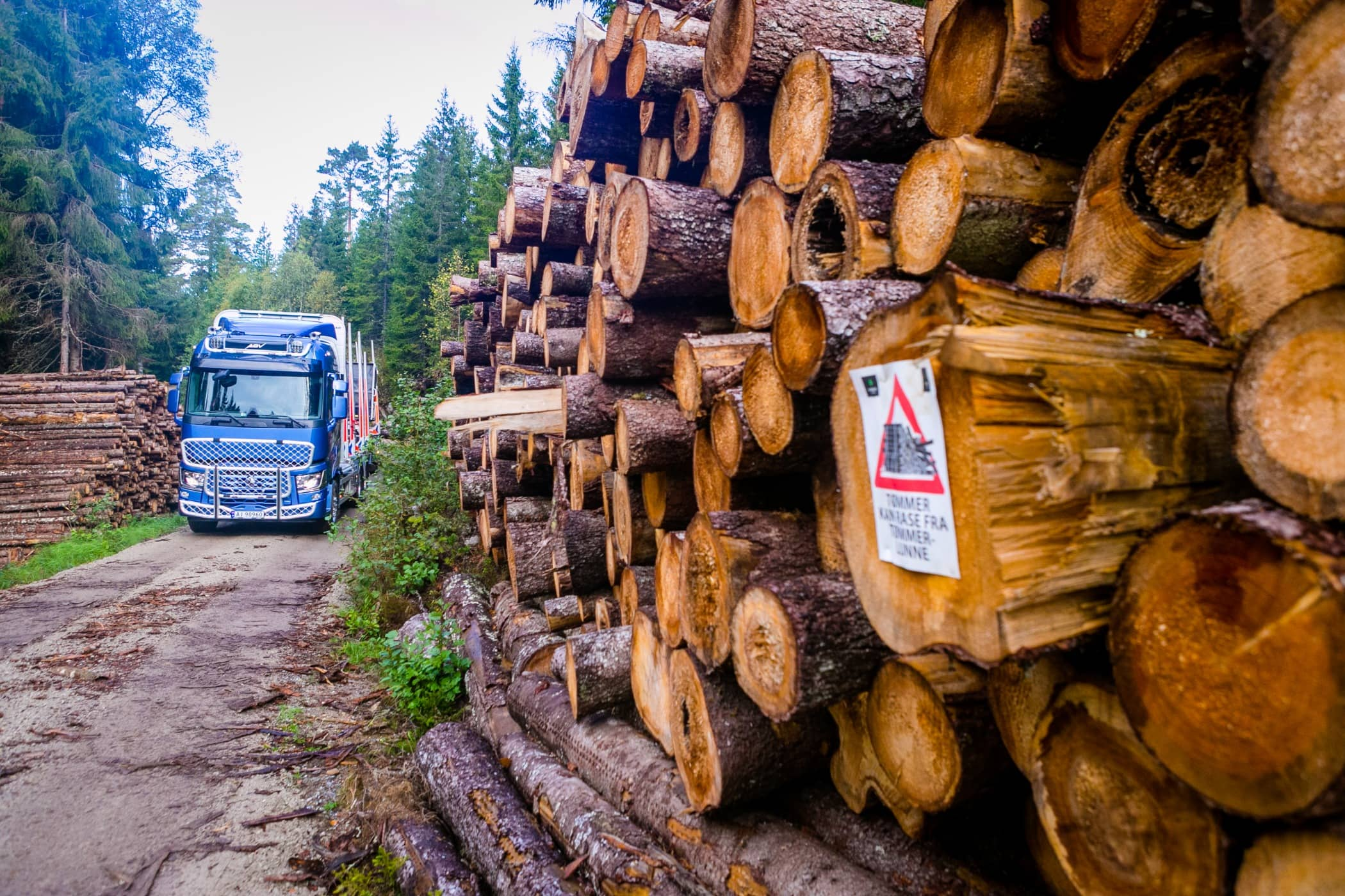 Lumber, Transport, Forest, Tree, Trunk, Wood, Logging