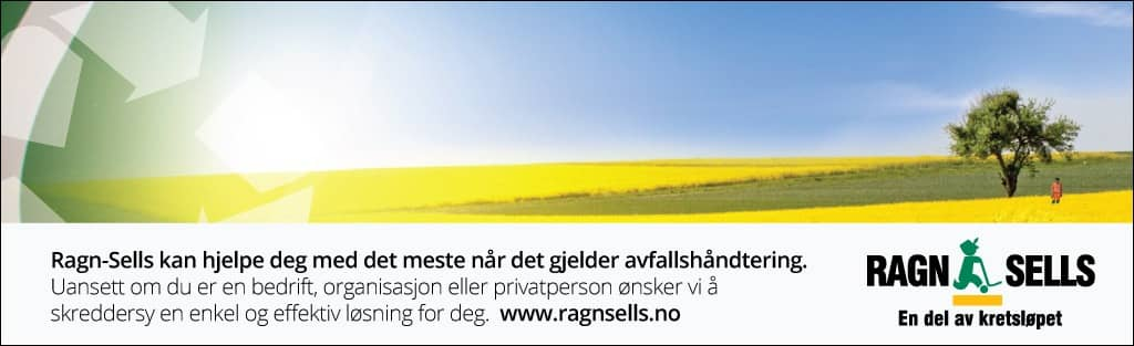 Natural environment, Field, Rapeseed, Prairie, Line, Font, Sky, Ecoregion, Yellow, Text