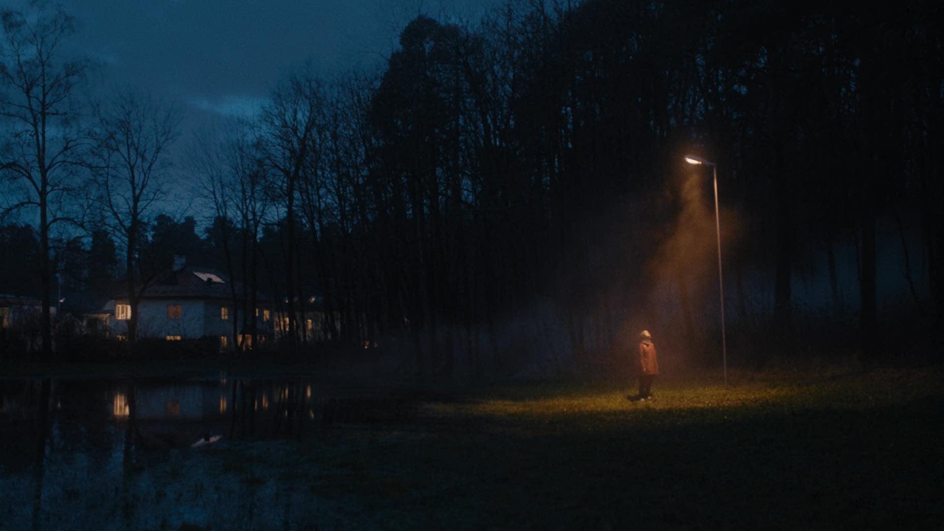 Street light, Water, Atmosphere, Plant, Sky, Window, Tree, Cloud