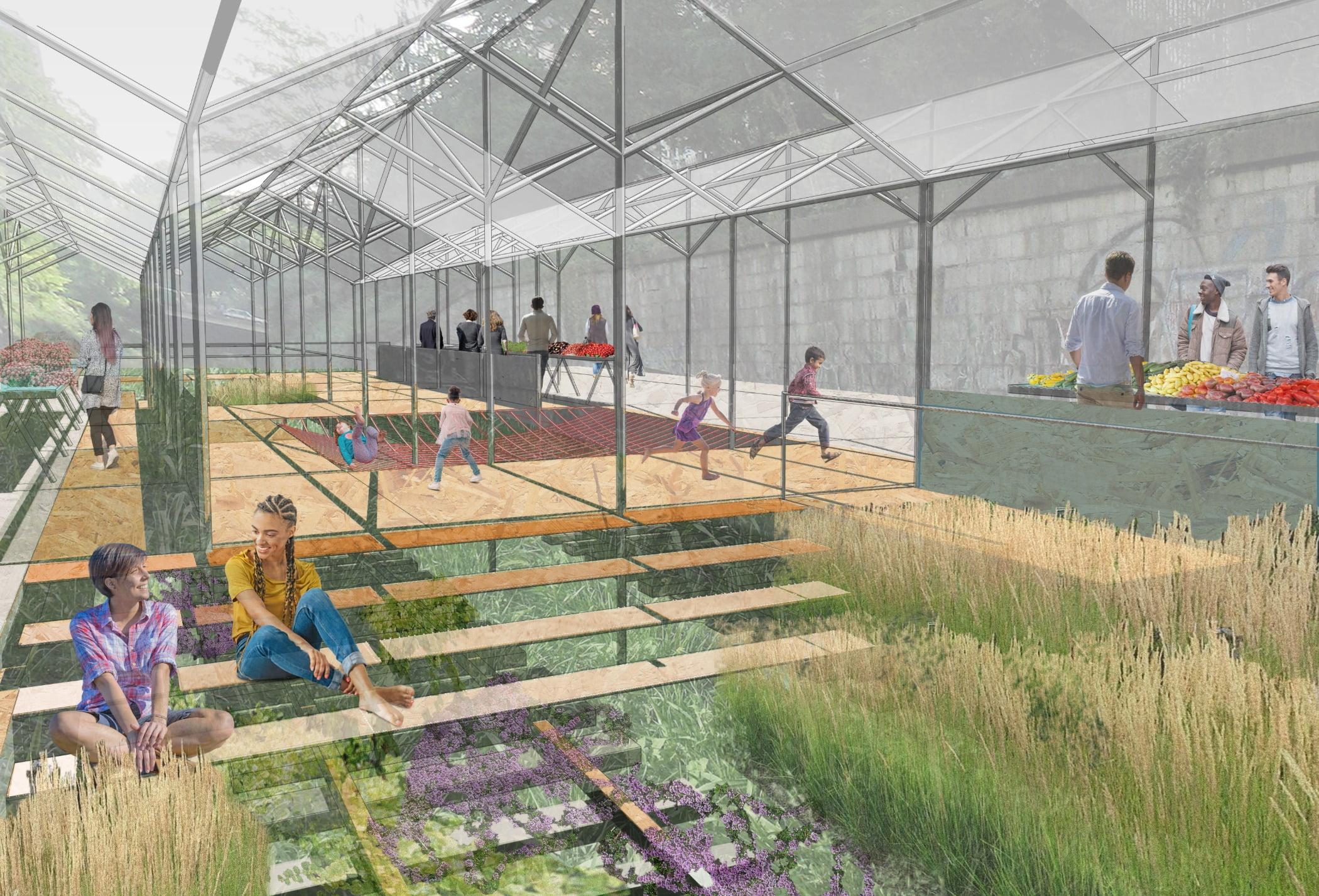Plant, Greenhouse, Line, Grass, Leisure