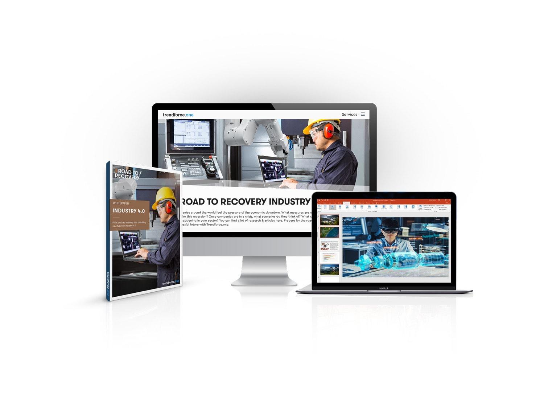 Multimedia, Product