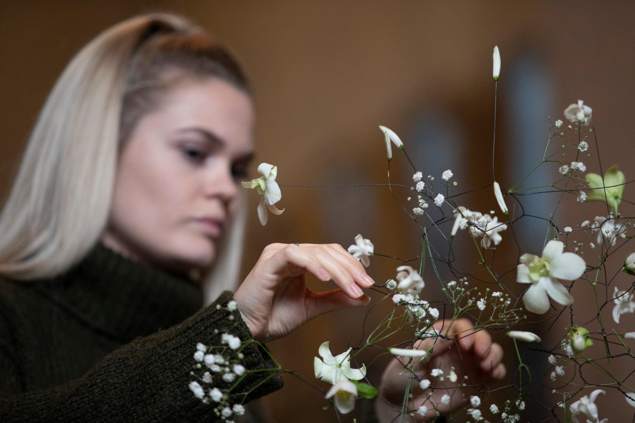 Flowering plant, Eyelash, Botany, Flower, Petal