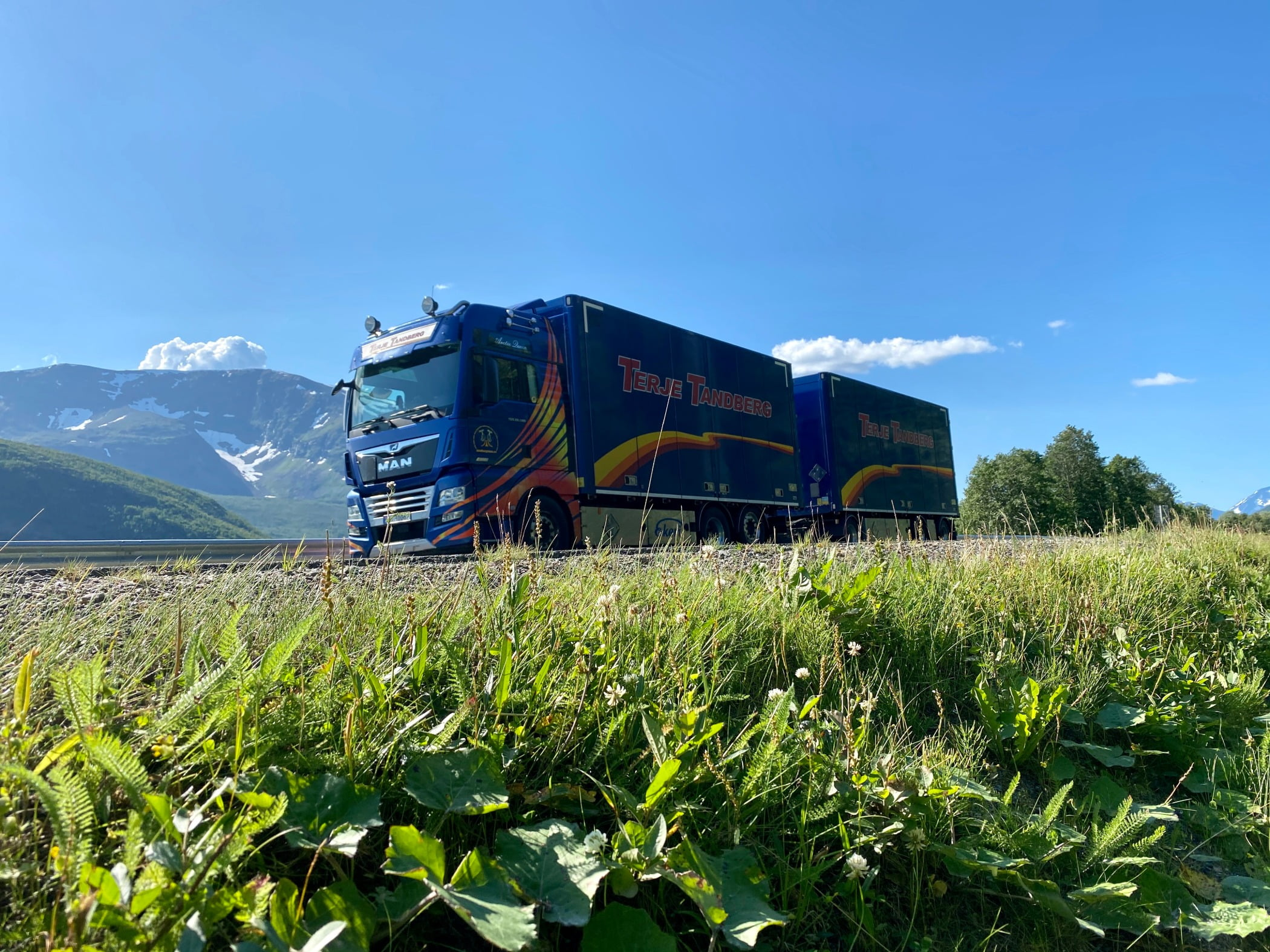 Freight transport, trailer truck, Rural area, Commercial vehicle, Crop, Plantation, Field, Farm, Agriculture