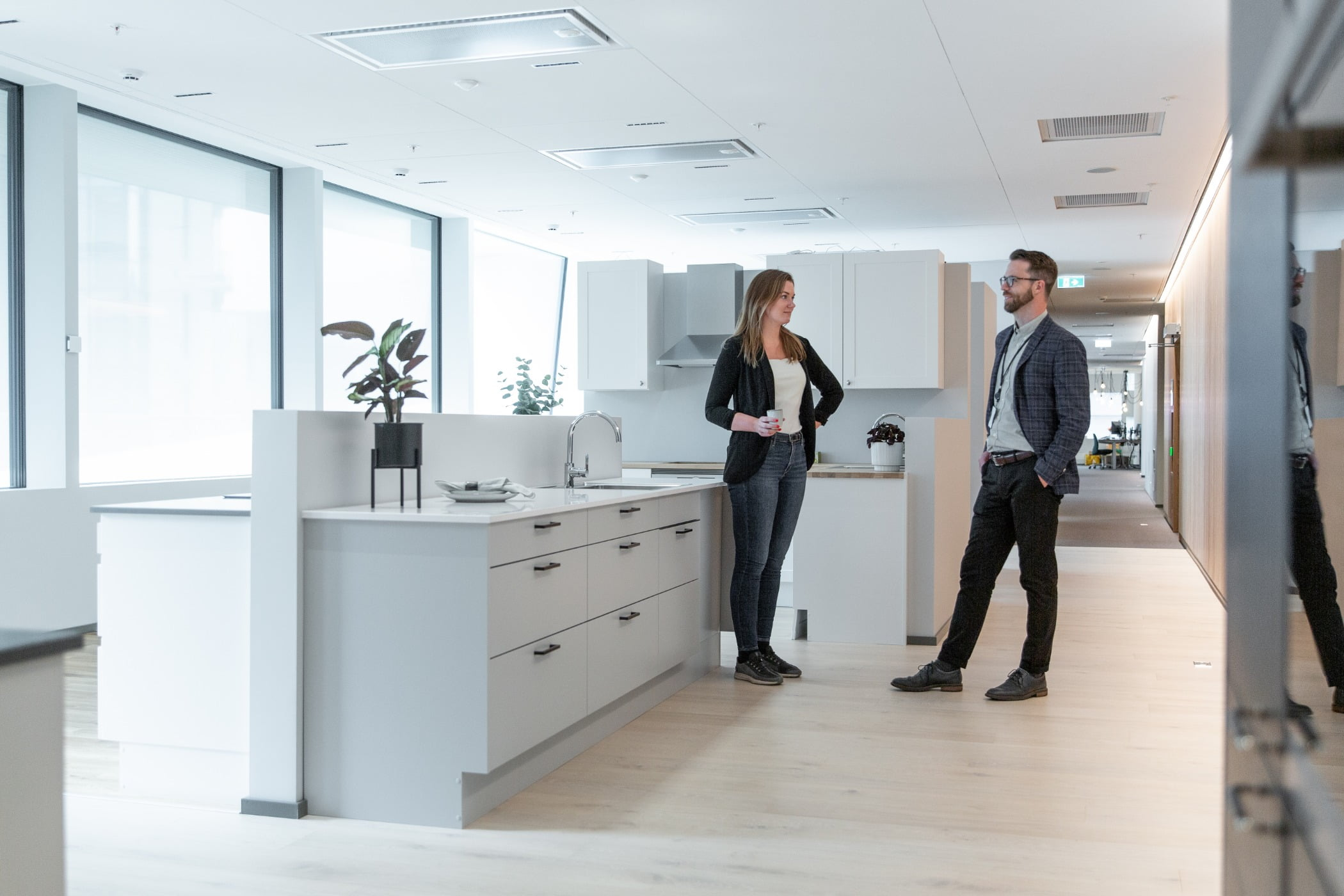 Interior design, Cabinetry, Standing, Houseplant, Flowerpot, Plant, Building