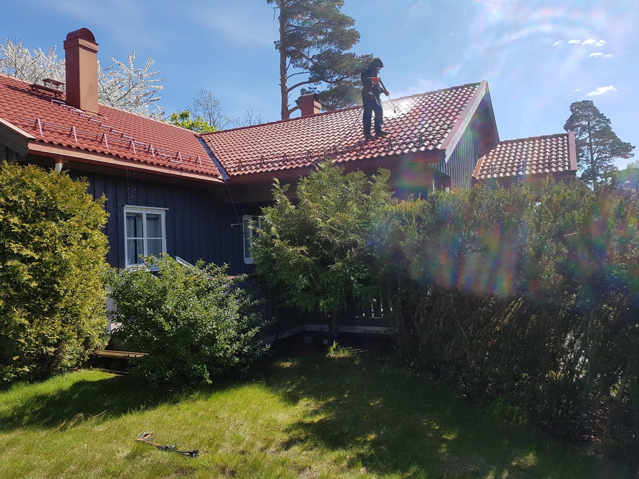 Land lot, Cloud, Plant, Sky, Window, Building, House, Tree, Cottage, Biome