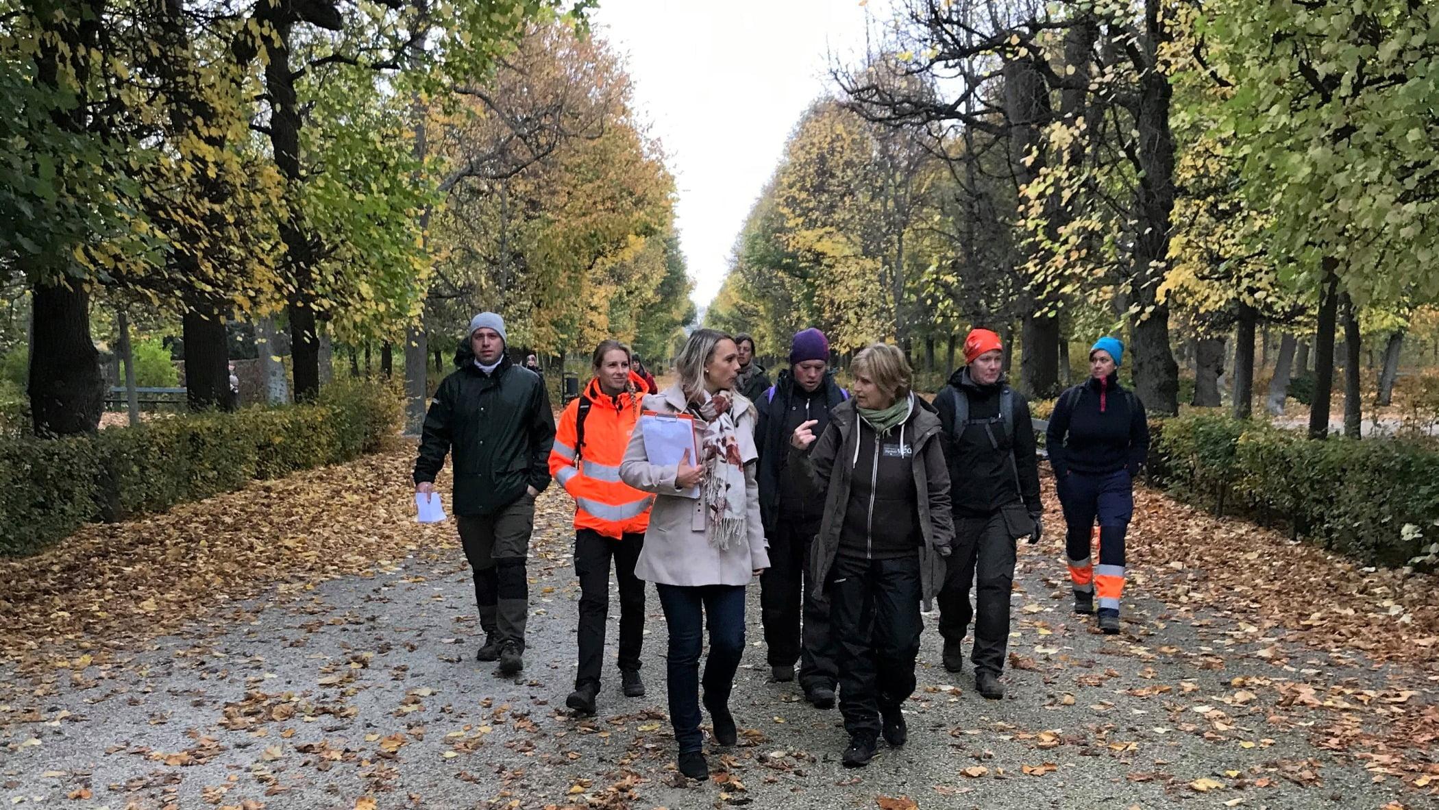 People in nature, Woody plant, Social group, Autumn, Mammal, Leaf, Deciduous, Jacket, Footwear