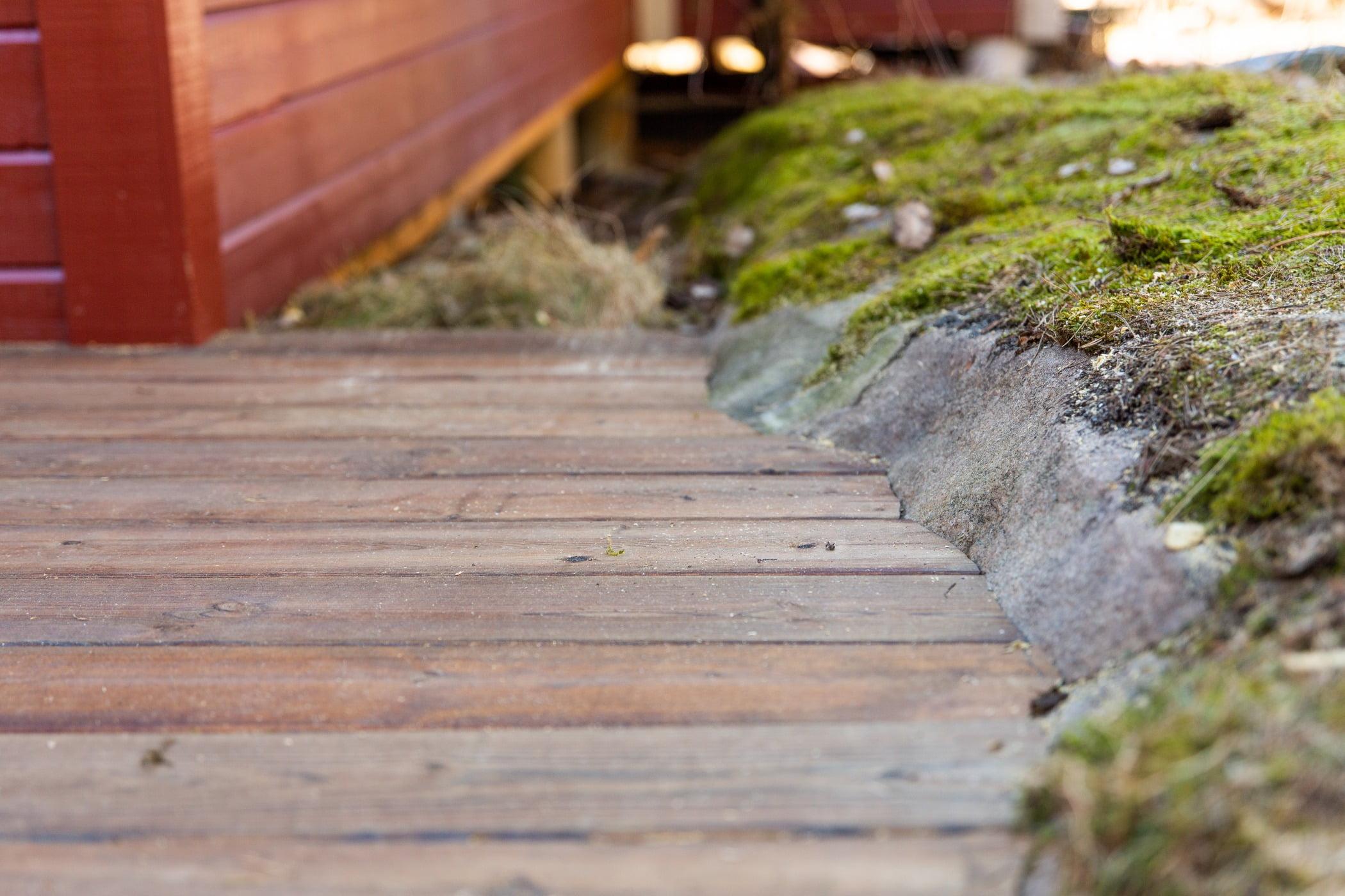 Road surface, Wood, Flooring, Grass