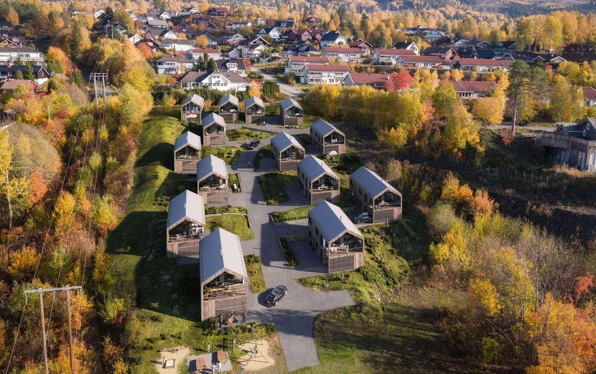 Residential area, Aerial photography, Leaf, Tree, Sky, Autumn, Suburb