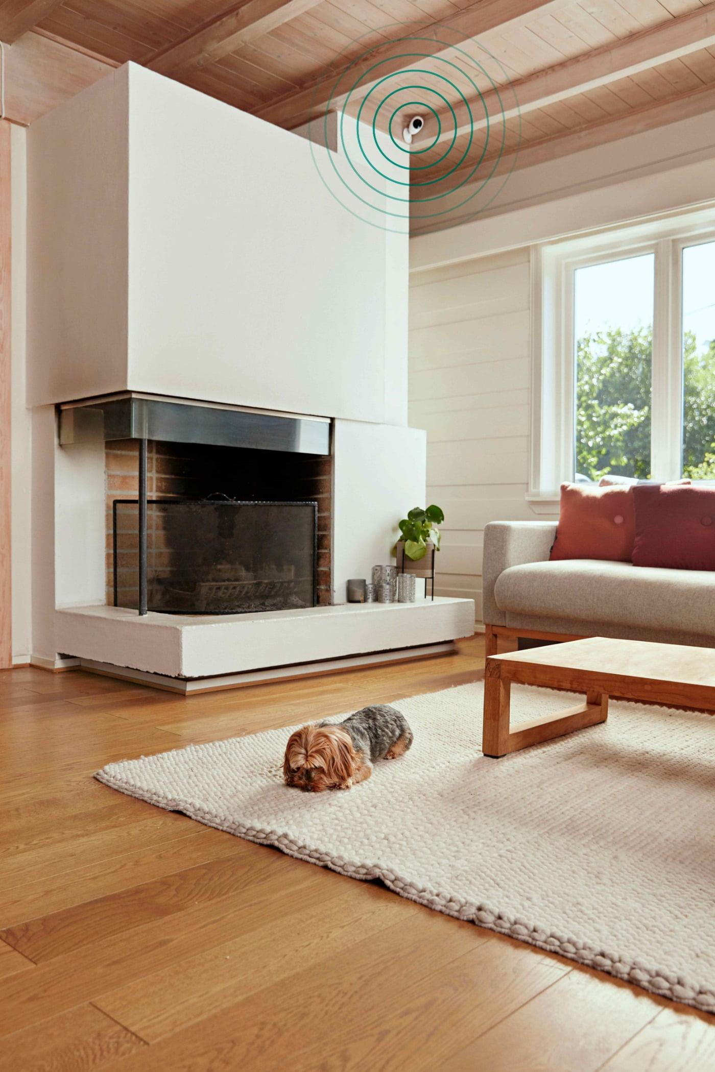 Interior design, Living room, Brown, Couch, Wood, Comfort, Flooring, Hall, Floor, Window